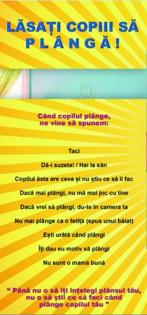Permis de Parinte by Crina Coliban - Consiliere plans